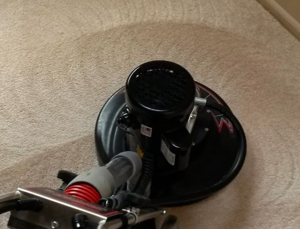 carpet cleaning chandler az