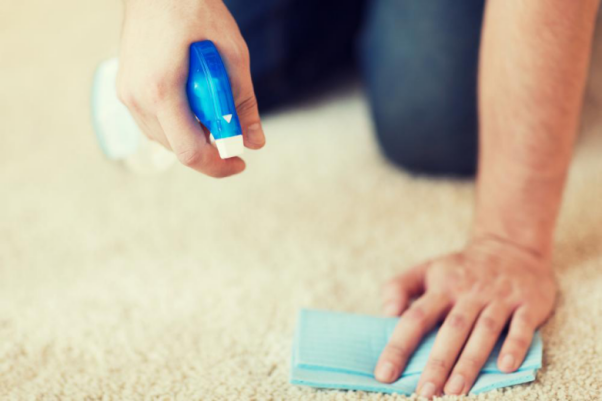 4 Reasons to Have Your Carpet Cleaned Regularly